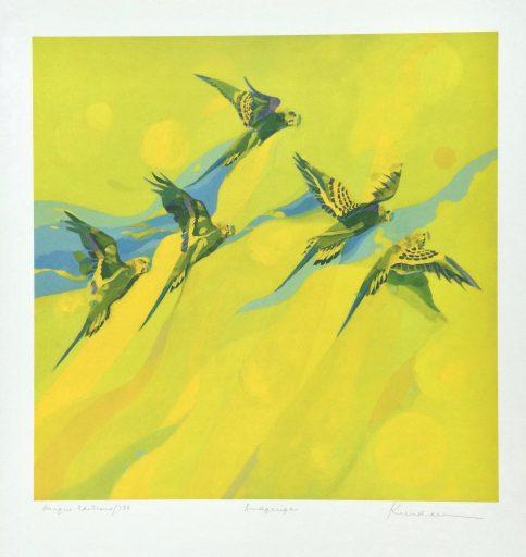 Australian Bird Print